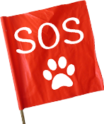 sos-flag